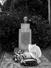 photo danielle casanova stele