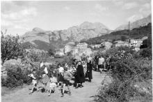 images danielle casanova commemoration 1955