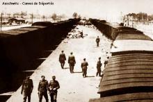 le convoi des 31000 Aushwitz